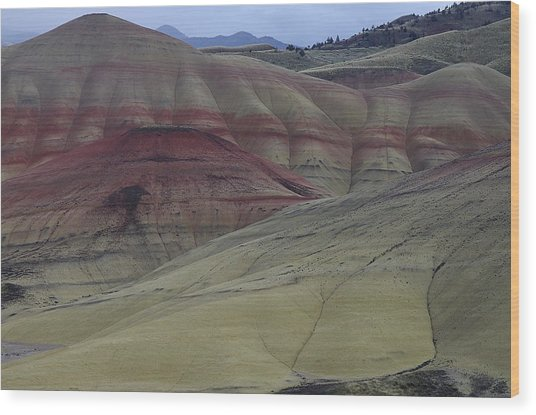 Painted Hills 3 Wood Print