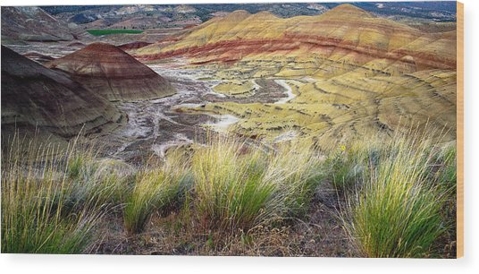 Painted Hills From Overlook Trail Wood Print by Adele Buttolph