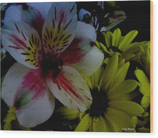 Painted Lily Wood Print by Greg Patzer