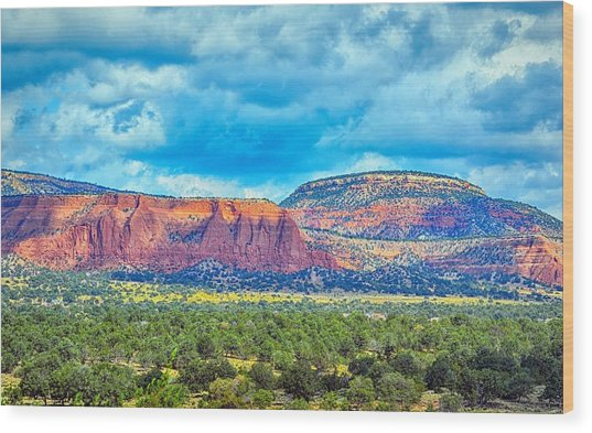 Painted New Mexico Wood Print