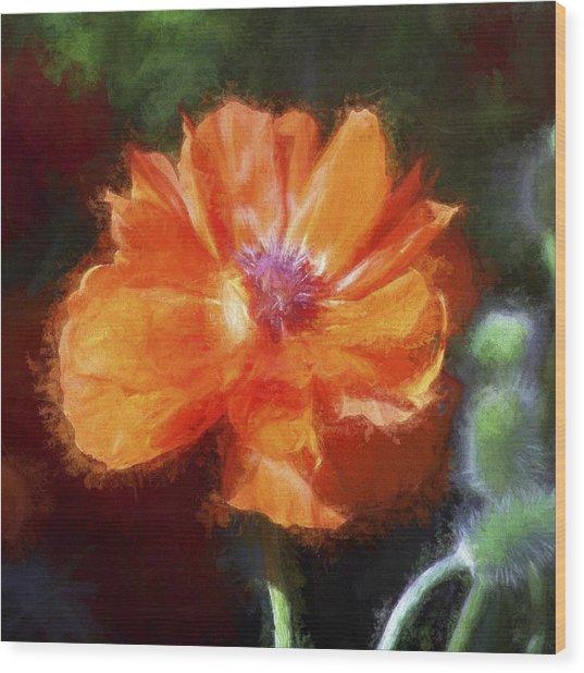 Painted Poppy Wood Print