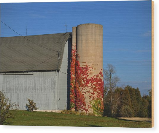 Painted Silo Wood Print