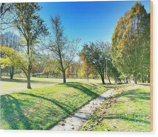 Painting With Shadows - Park Day Wood Print