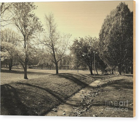 Painting With Shadows - Sepia Wood Print