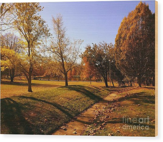 Painting With Shadows - Setting Sun Wood Print