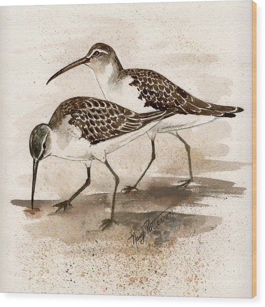 Pair Of Sandpipers Wood Print