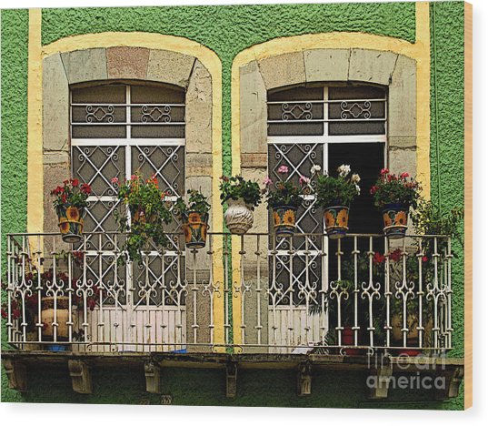 Pair Of Windows In Green Wood Print by Mexicolors Art Photography