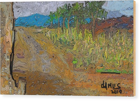 Paisaje - Chile - Campo 1 Wood Print by Carlos Camus