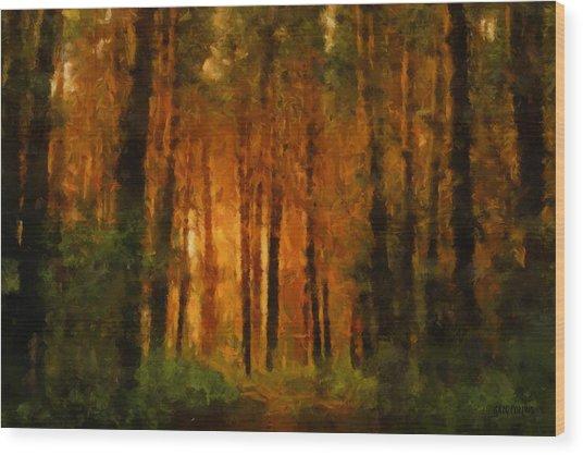 Palava Valo Wood Print