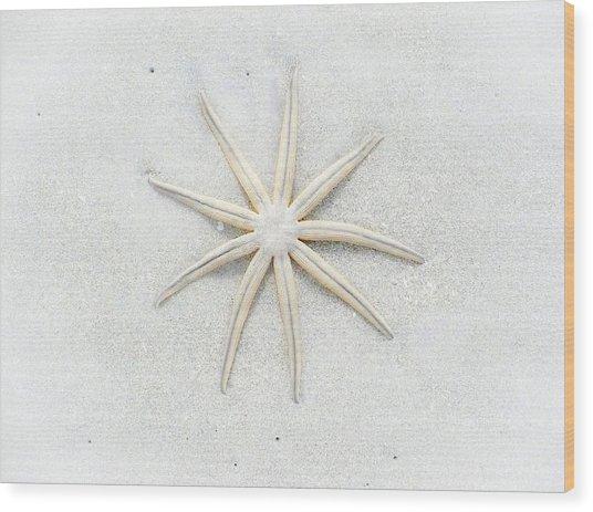 Pale Star Wood Print