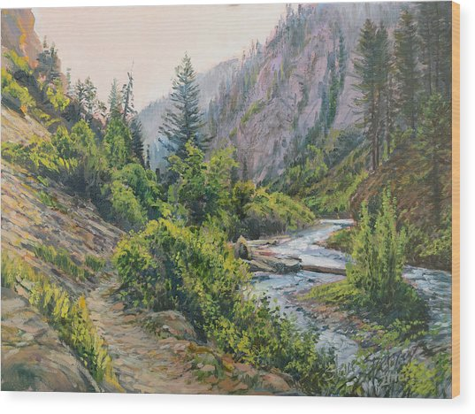 Palisades Creek  Wood Print
