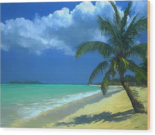 Palm Beach In The Keys Wood Print