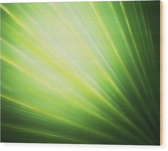 Palm Fronds Wood Print
