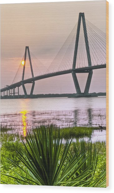 Palm Harbor Sunset - Charleston Sc Wood Print by Drew Castelhano