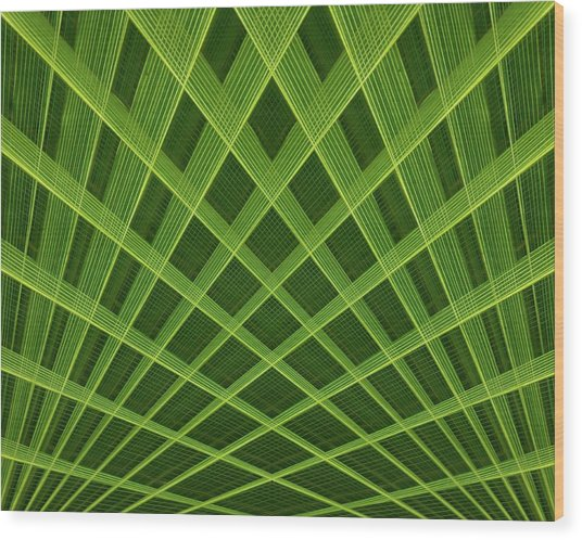 Palm Leaf Composite Wood Print