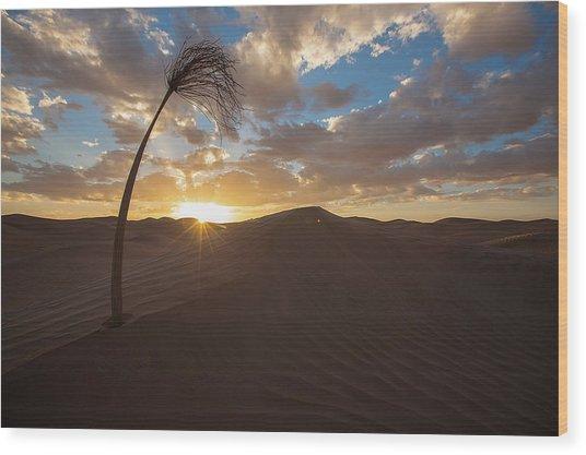 Palm On Dune Wood Print