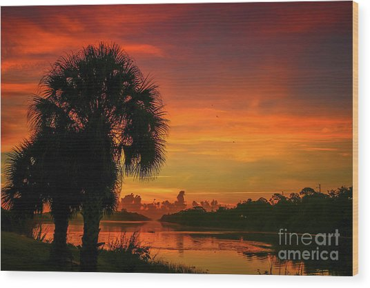 Palm Silhouette Sunrise Wood Print