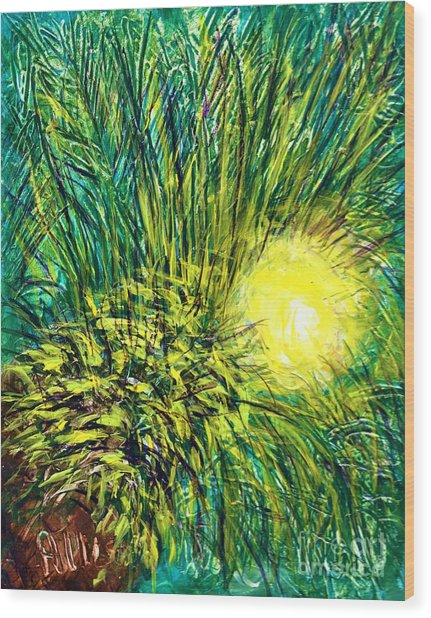 Palm Sunburst  Wood Print
