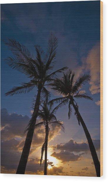 Palm Sunrise Wood Print