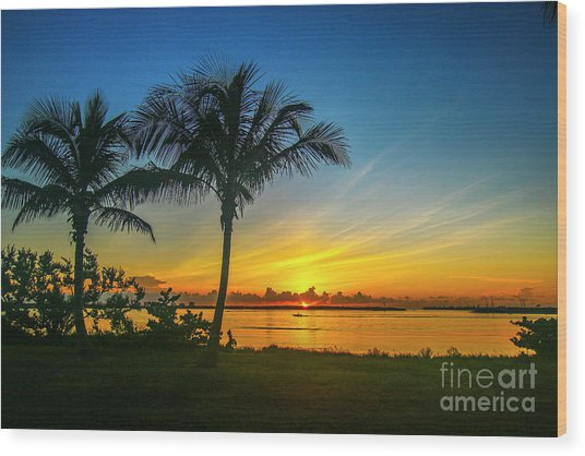 Palm Tree And Boat Sunrise Wood Print