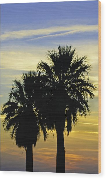Wood Print featuring the photograph Palm Tree Silhouette by Sherri Meyer