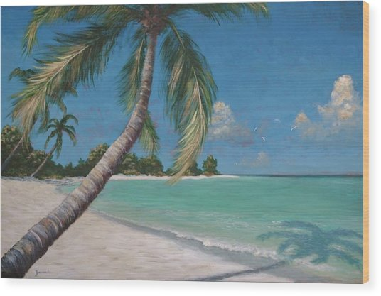 Palm Trees And Beach By Alan Zawacki Wood Print