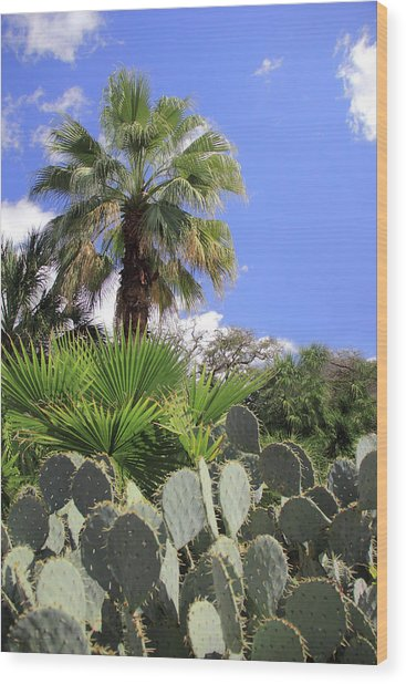 Palm Trees And Cactus Wood Print