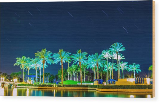 palm Trees Wood Print