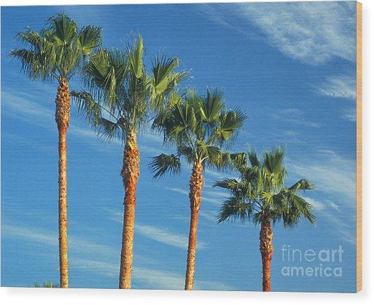Palm Trees Wood Print by Marc Bittan