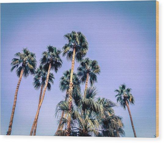 Palm Trees Palm Springs Summer Wood Print