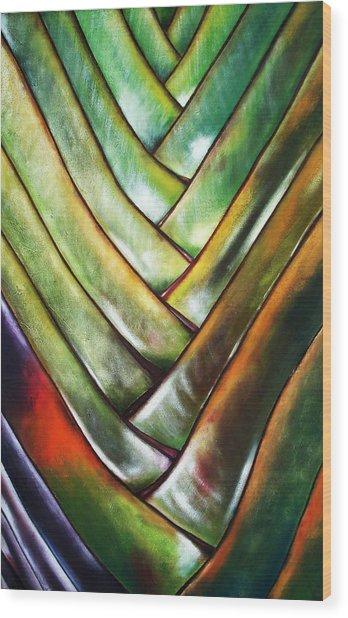 Palma De Madagascar Wood Print by Maribel Garzon