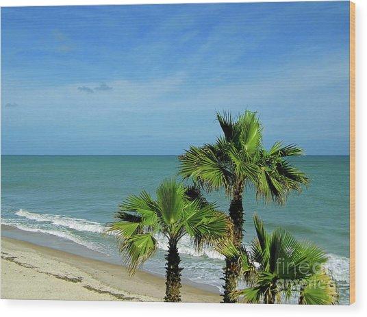 Palms At Vero Beach Wood Print