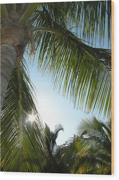 Palms Wood Print by Audrey Venute