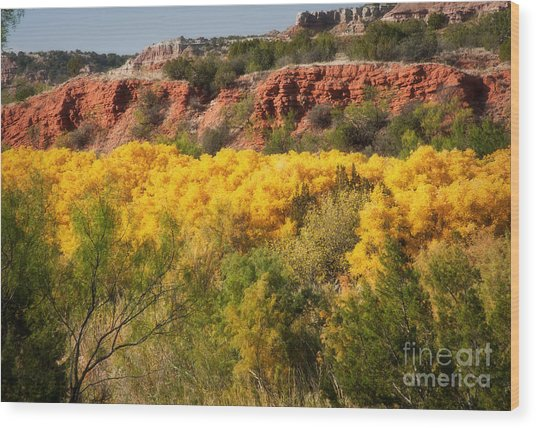 Palo Duro Canyon Fall Colors Wood Print