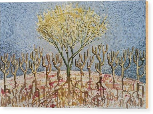 Palo Verde And Her Twelve Apostles Wood Print by Vaughan Davies
