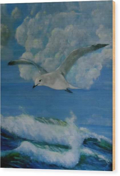 Panama City Seagull Wood Print