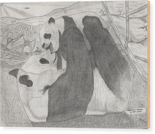 Panda Family Wood Print by Matthew Moore