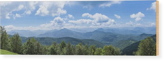 Panorama Of The Foothills Of The Pyrenees In Biert Wood Print