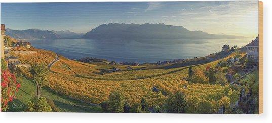 Panorama On Lavaux Region, Vaud, Switzerland Wood Print