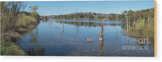 Panoramic View Of Large Lake With Grass On The Shore Wood Print