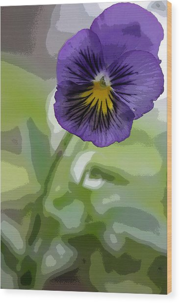 Pansy Wood Print by David Bearden