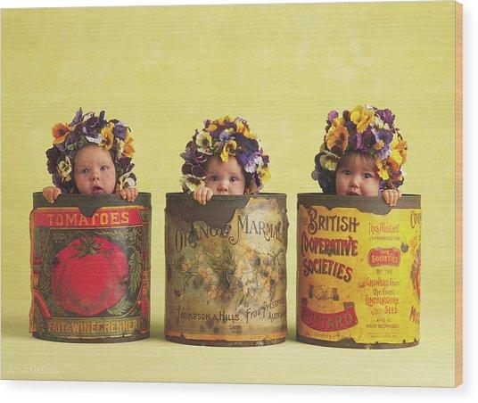 Pansy Tins Wood Print