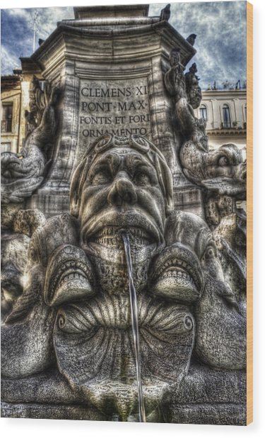 Pantheon Fountain Wood Print by Brian Thomson
