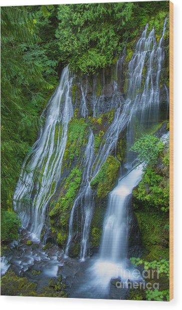 Panther Creek Falls Summer Waterfall 1 Wood Print