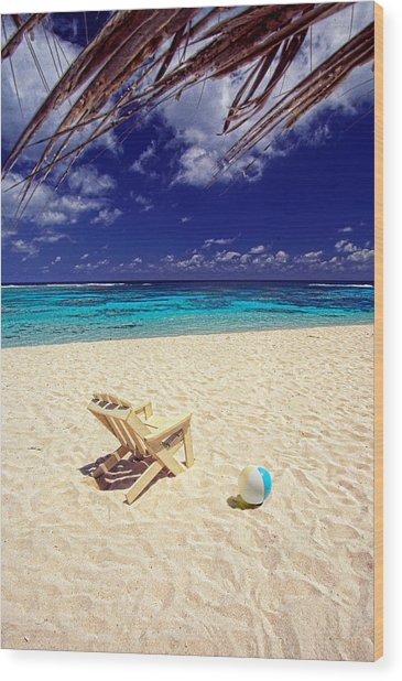 Paradise Beach Ball Wood Print