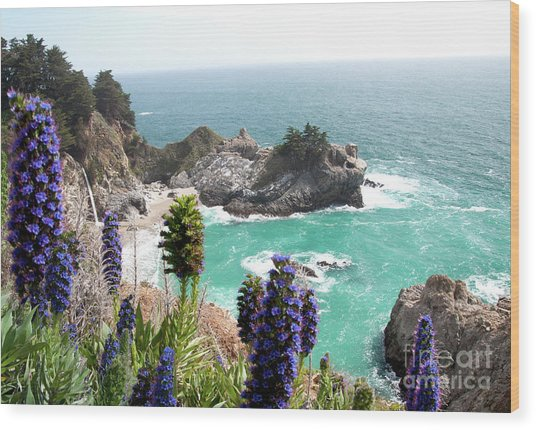 Paradise Cove Wood Print by Digartz - Thom Williams