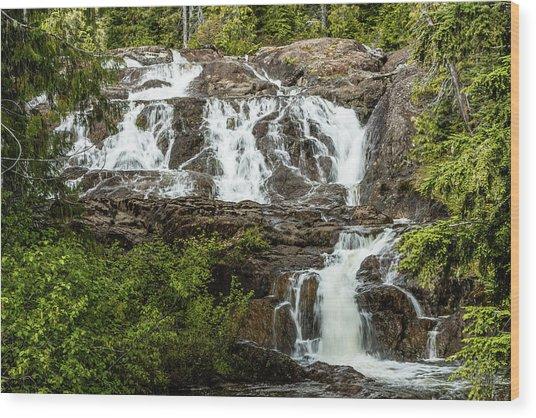 Paradise Falls-1 Wood Print
