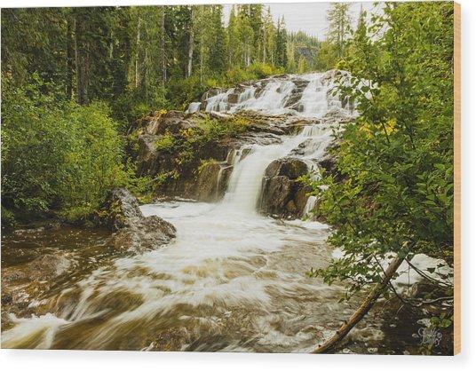 Paradise Falls-2 Wood Print