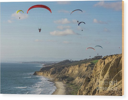Paragliders At Torrey Pines Gliderport Over Black's Beach Wood Print