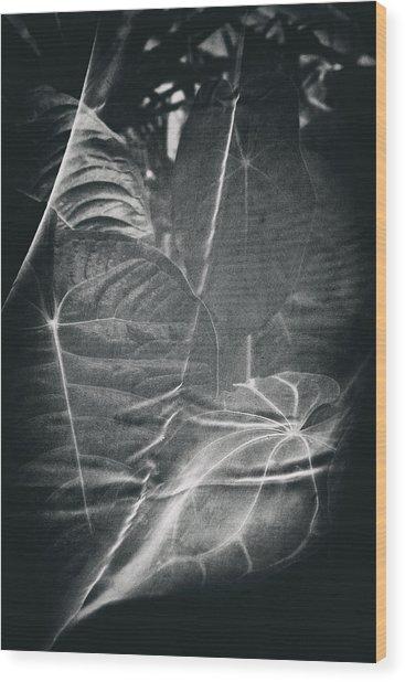Parallel Botany #5266 Wood Print